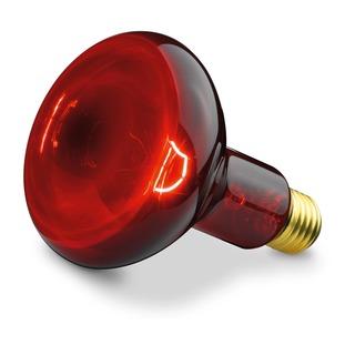 Beurer Náhradní žárovka 100W pro infračervenou lampu Beurer IL10, IL 11 a Sanitas SIL 06