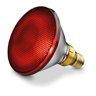 Beurer Náhradní žárovka 150W pro infračervenou lampu Beurer IL20, IL21, IL30 a Sanitas SIL16, SIL25