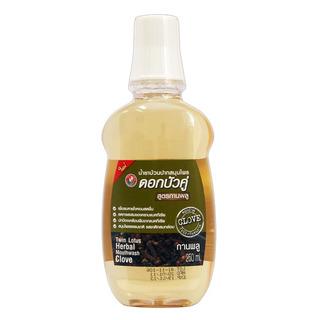 Twin Lotus Clove Mouthwash 250ml - bylinná ústní voda s hřebíčkem a šalvějem
